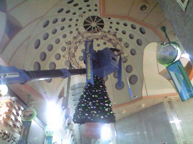 クリスマスツリーが吊られました